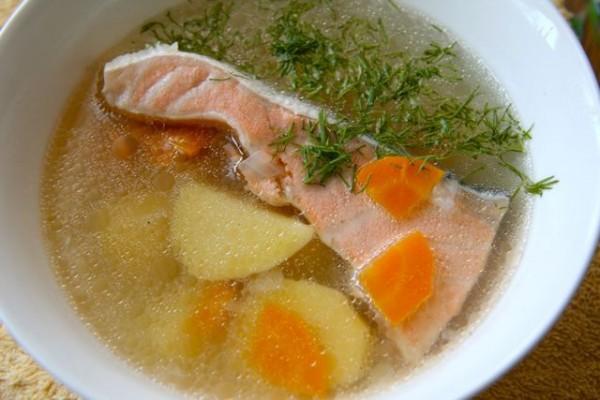 Лучшие рецепты ухи из красной рыбы. 15862.jpeg