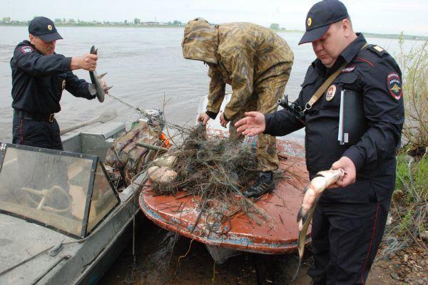 В Новосибирске подорожало браконьерство. 13895.jpeg