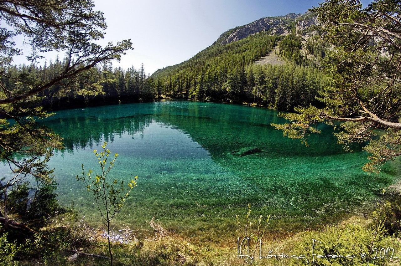 Австрийское Зеленое озеро превращается в потусторонний мир. 14908.jpeg