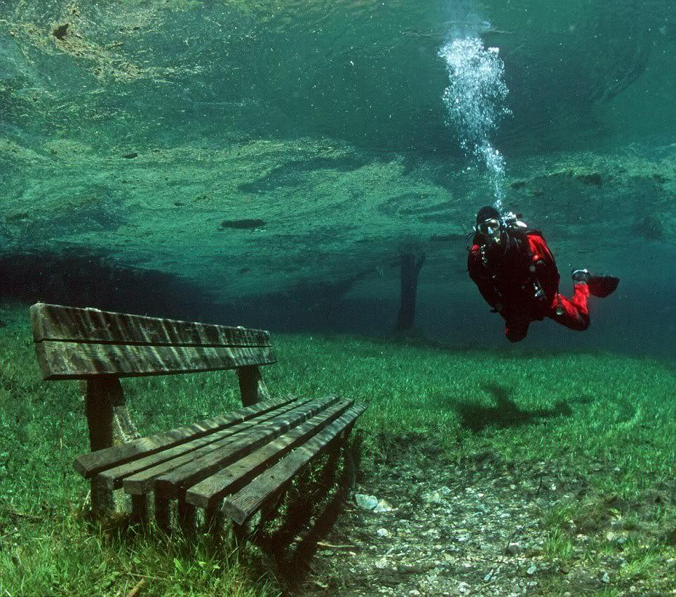 Австрийское Зеленое озеро превращается в потусторонний мир. 14909.jpeg