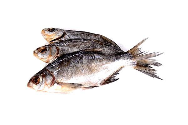 Большие хитрости маленькой рыбки. 13934.jpeg