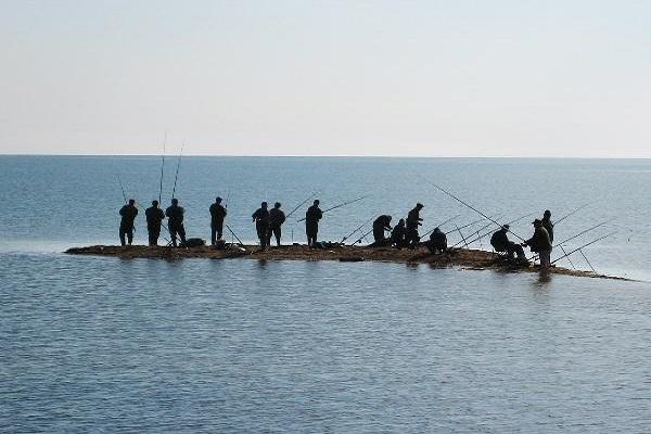Лов пеленгаса на Азовском море.. 15944.jpeg