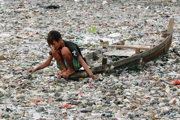 Амазонские рыбы питаются пластиком. 13965.jpeg