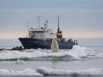 """В Карском море обнаружили """"законсервированный"""" слой воды"""