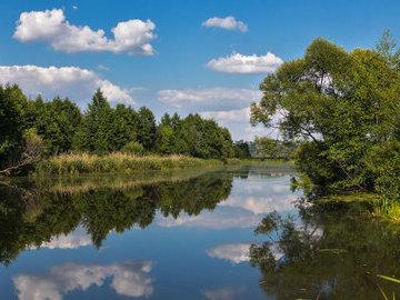 Суд обязал рязанский комбинат выплатить 4 миллиарда за отравление реки