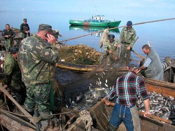 В Псковской области было изъято 11 килограммов незаконно добытой рыбы