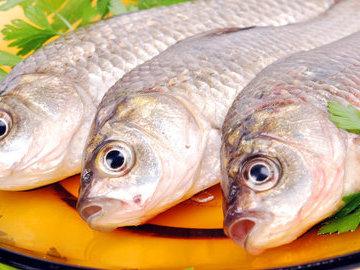 С прилавков российских магазинов может исчезнуть свежая рыба