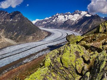 Алечский ледник в Альпах может исчезнуть к концу XXI века