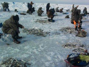 Несколько советов начинающему рыболову- зимнику