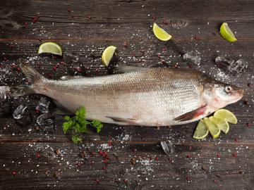 Непредсказуемая сибирская рыба