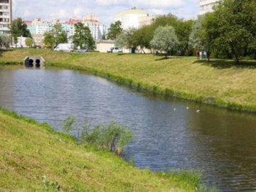 Экологи сообщили об улучшении состояния воды в реке Новая
