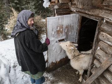 Отшельнице Агафье подарили щенка