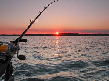 Простые правила успешного рыбака