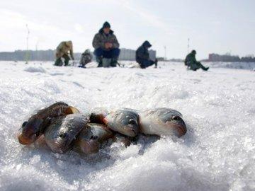 Рыбацкая байка. Первый лёд