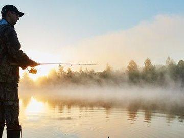 Как высокое и низкое давление влияет на поведение рыб