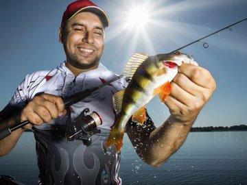 В поисках лучших приманок для рыбалки на окуня