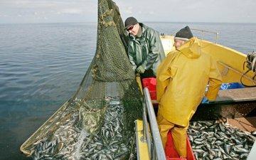 На рыбалку ходить с сетью и паспортом