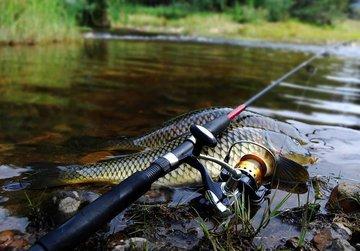 С начала 2020 года в силу вступает новый Закон о рыболовстве