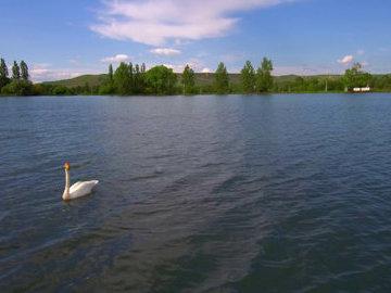 В Северной Осетии восстановят озеро с ценными видами рыб