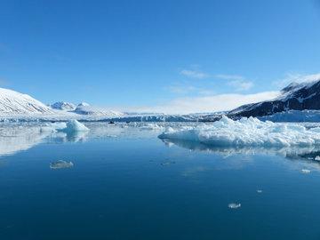 В арктических озерах обнаружили неизвестные виды рыб