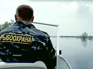В России могут отменить рыбоохранные зоны