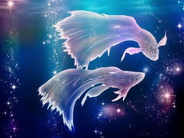 Когда рыба знает звездам счет
