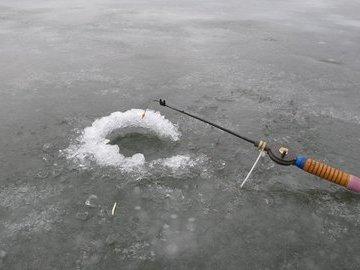 Ищем мотыля зимой