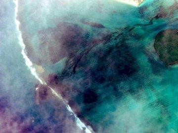В океан у острова Маврикий вылилось около тонны нефтепродуктов
