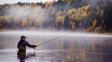Выбор удочки для рыбалки нахлыстом
