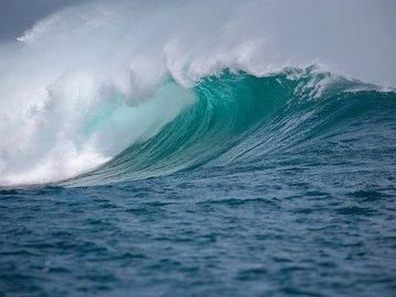 Власти Японии отложили слив радиоактивной воды в океан