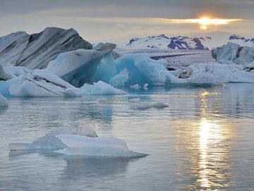 Сайка ушла к кромке полярных льдов