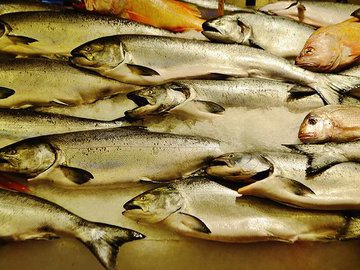 Более 16 тонн рыбы не пропустили через границу в Псковской области