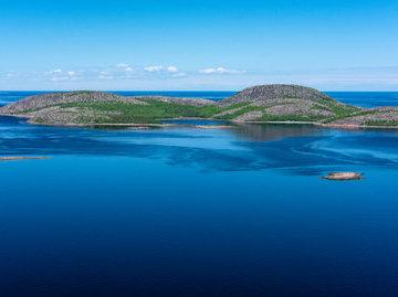 В реку на севере Карелии выпустили более 50 тысяч мальков сига