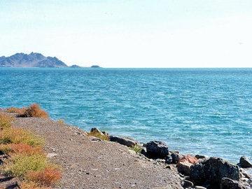 В ближайшие годы ожидается восстановление морского промысла в Каспийском море