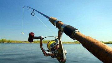 Места надо знать: где лучше ловить рыбу спиннингом