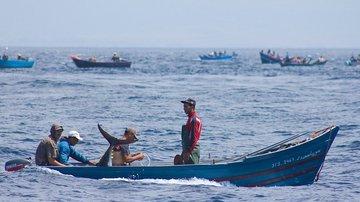 Быстрая рыбалка около аэропортов Гибралтара, Бостона и Нью-Йорка