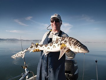 Быстрая рыбалка около аэропортов Сан-Хуана, Сан-Франциско и Сиднея