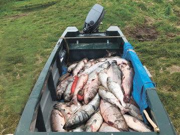 На реках Камчатки задержали двух браконьеров