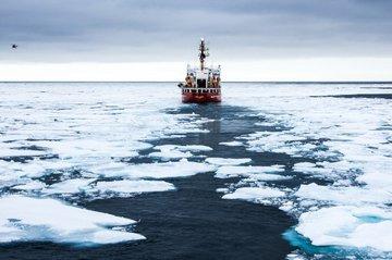 Специалисты по морским животным: на полюсе есть рыба
