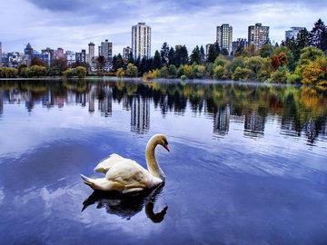 Самара: обыкновенная история обыкновенного озера