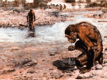"""Жизнь на Земле могла зародиться в  """"супе"""" из воды и синильной кислоты"""