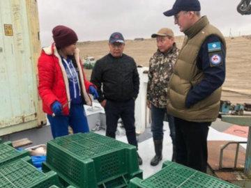 В Якутии планируют активнее продвигать рыбу за пределами региона
