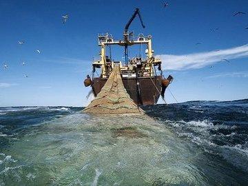 Глобальный сайт для отслеживания рыболовецких судов со всего мира