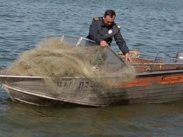 Из реки Воронеж извлекли более 20 сетей и выпустили в воду 45 кг рыбы
