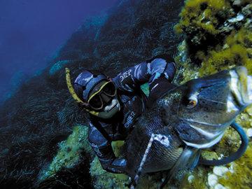 Подводная охота. Что нужно знать