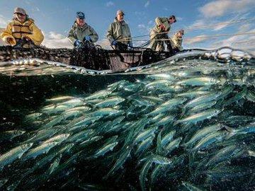 Малоизвестные и тайные места для рыбалки в Северной Америке