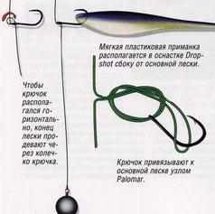 Несколько слов об оснастке дроп-шот