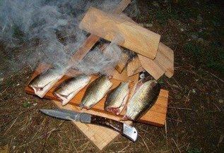 Сохранение рыбы в походных условиях