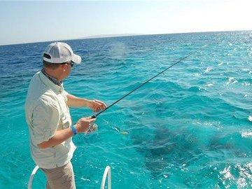 Советы для тех, кто хочет рыбачить в Австралии
