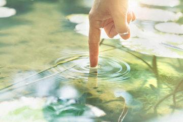 Учимся «читать» водоем